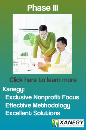 Nonprofit Software Selection Phase III Work with a Partner who Understands